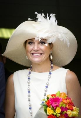 Queen Máxima, Nov. 18, 2013   The Royal Hats Blog