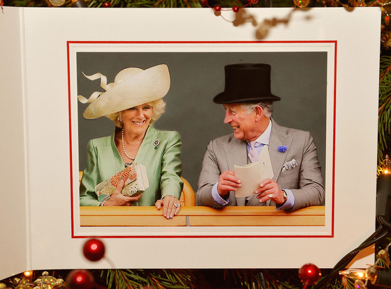 Duchess of Cornwall and The Prince of Wales, June 19, 2013 | The Royal Hats Blog