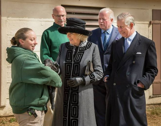 Duchess of Cornwall, March 18, 2015 in Lock & Co. | Royal Hats