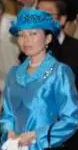 Princess Akiko, December 2, 2015