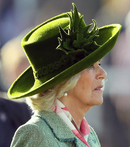 Duchess of Cornwall, Mar 15, 2017 in Philip Treacy | Royal Hats
