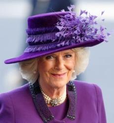 Duchess of Cornwall, Mar 13, 2017 in Philip Treacy | Royal Hats