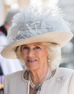 May 15, 2018 in PT | Royal Hats